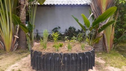 ปลูกพืชผักสวนครัวสร้างความมั่นคงทางอาหารในครัวเรือน_2