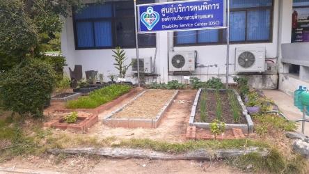 ปลูกพืชผักสวนครัวสร้างความมั่นคงทางอาหารในครัวเรือน_3